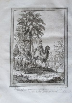Original Engraving of Arabs Traders Traveling by Camel, horse and Oxen, published in 1748. Arab...