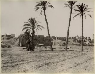 Photograph of Arab Ruins and Palm Trees, Printed Circa 1890. Arab Photo